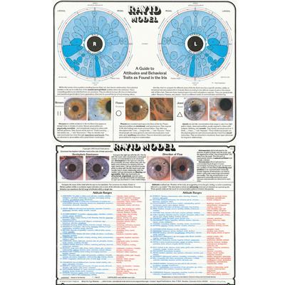 iris chart 1