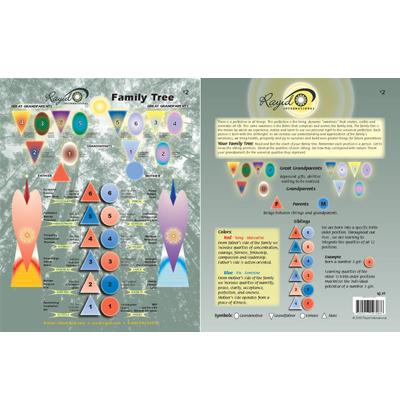 rayid chart 2